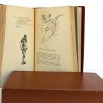 Dorgelès. Les Croix de Bois. Dessins et pointes sèches de Dunoyer de Ségonzac. Éditions de la Banderole 1921. Pages intérieures_2.
