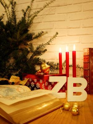 C'est Noël à la librairie Zooka's Books !