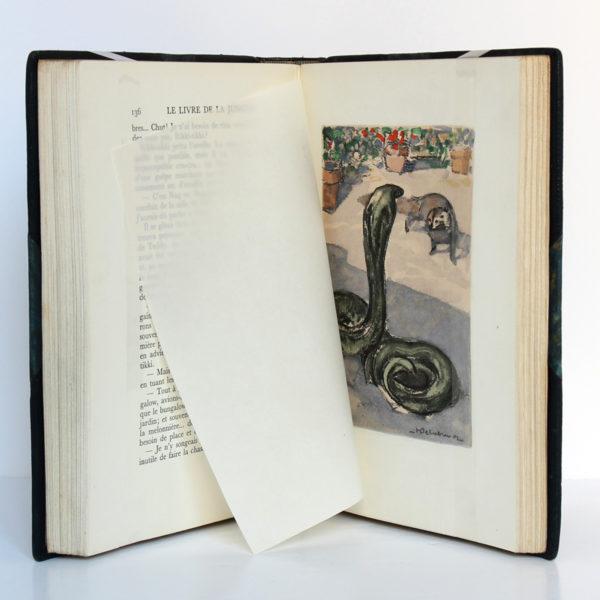 Le Livre de la jungle, Rudyard KIPLING. Illustrations H.DELUERMOZ. Librairie Delagrave, 1936. Pages intérieures.
