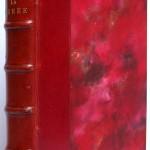 La Curée. Émile Zola. Livre ancien. 1894.