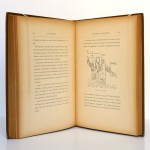 La locomotive Le matériel roulant et l'exploitation des voies ferrées. Marc de Meulen. Firmin-Didot 1889. Pages intérieures.