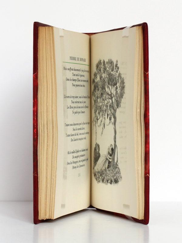 Florilège d'amour, Pierre de RONSARD, illustrations de MARTY. Flammarion, 1953. Pages intérieures.