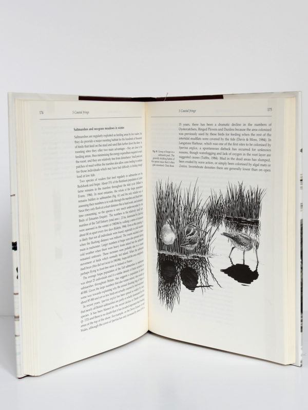 Birds life of coasts and estuaries, Peter Ferns. Cambridge University Press, 1992. Pages intérieures.