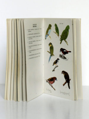 Pocket Guide to the birds of Borneo, The Sabah Society, 1984. Pages intérieures.