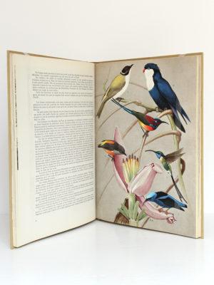 Vie et Mœurs des oiseaux, Paul Barruel. Horizons de France, 1961. Pages intérieures.